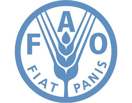 FAO smart fish campaign